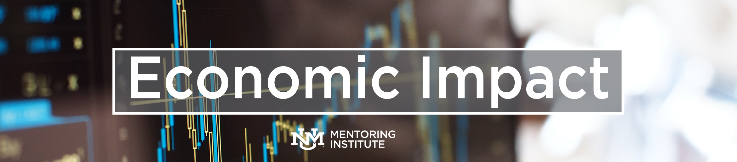 Mentoring Institute Conference 2017